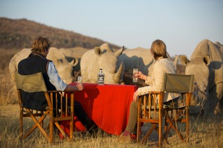 Save The Black Rhinos
